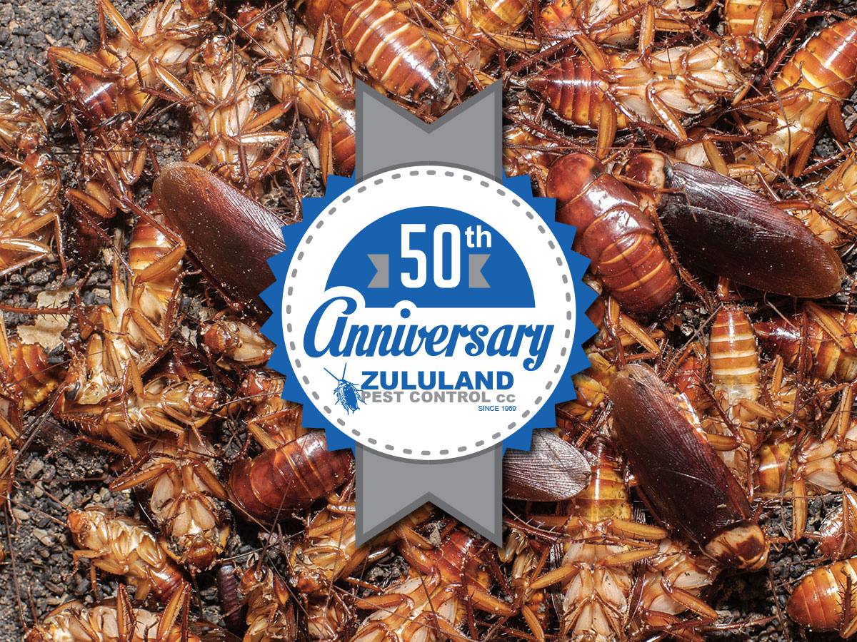 50 Years of Pest Control in Zululand
